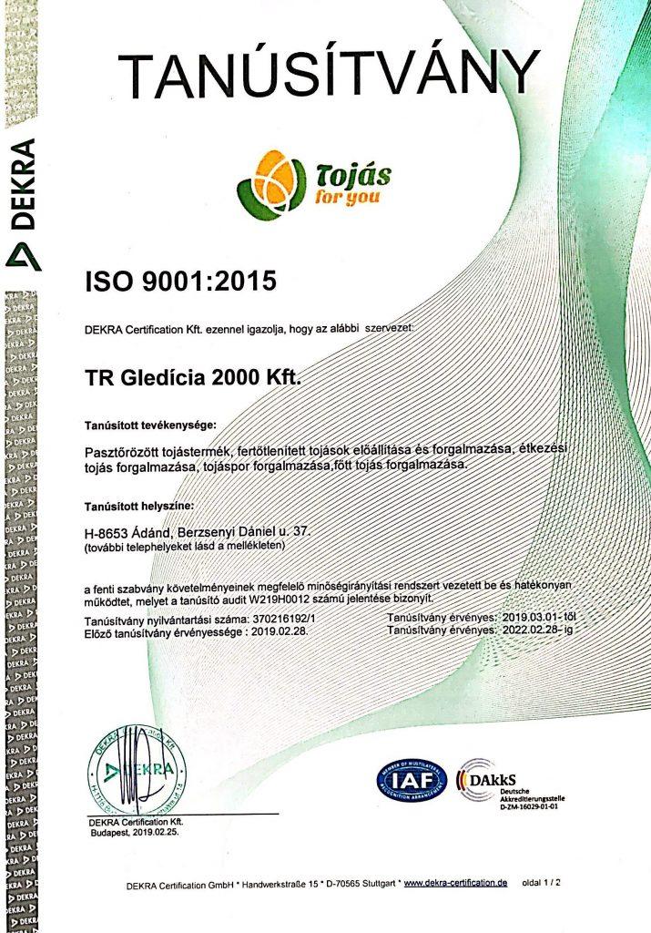 ISO 9001: 2015 Tanúsítvány